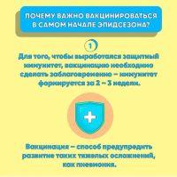 Подробнее: О вакцинации от гриппа